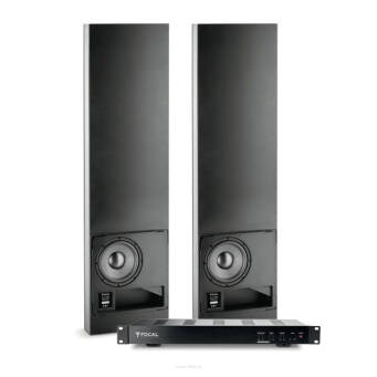 FOCAL 2 x 100 IWSUB8 + AMPLIFIER Zestaw